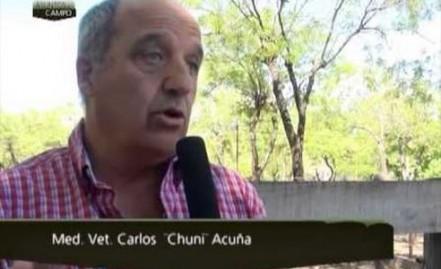Carlos Martín Acuña